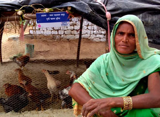 Women Empowerment Empowering through easy livelihood options like poultry